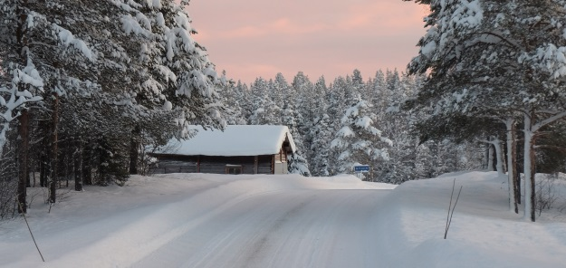 Reisverslag Lapland deel 3: The Road to Stockholm